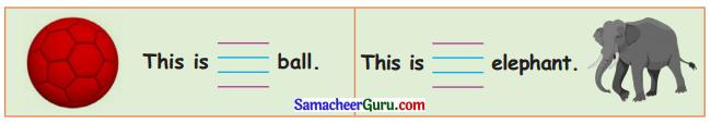 Samacheer Kalvi 3rd English Guide Term 1 Chapter 3 The World Around Us 21