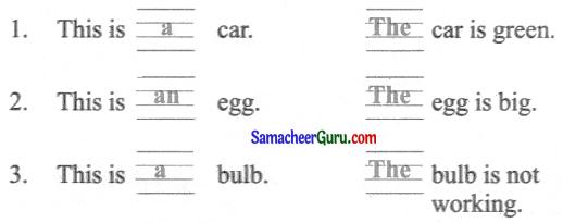 Samacheer Kalvi 3rd English Guide Term 1 Chapter 3 The World Around Us 24