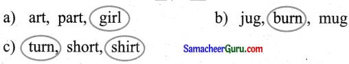 Samacheer Kalvi 3rd English Guide Term 1 Chapter 3 The World Around Us 41