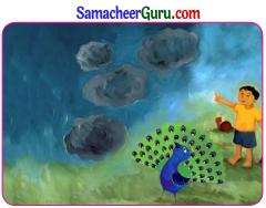 Samacheer Kalvi 3rd English Guide Term 2 Chapter 1 Seasons' Story 18
