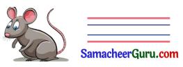 Samacheer Kalvi 3rd English Guide Term 2 Chapter 1 Seasons' Story 2