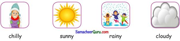 Samacheer Kalvi 3rd English Guide Term 2 Chapter 1 Seasons' Story 25