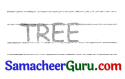 Samacheer Kalvi 3rd English Guide Term 2 Chapter 1 Seasons' Story 3