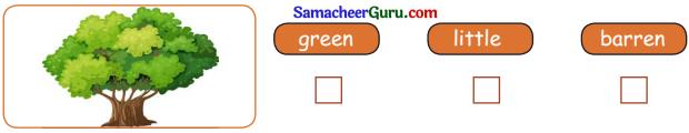 Samacheer Kalvi 3rd English Guide Term 2 Chapter 1 Seasons' Story 41