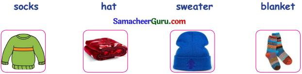 Samacheer Kalvi 3rd English Guide Term 2 Chapter 1 Seasons' Story 52