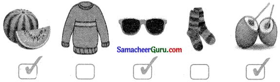 Samacheer Kalvi 3rd English Guide Term 2 Chapter 1 Seasons' Story 58