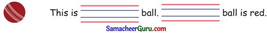 Samacheer Kalvi 3rd English Guide Term 2 Chapter 1 Seasons' Story 6