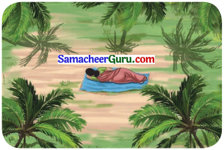 Samacheer Kalvi 3rd English Guide Term 3 Chapter 1 Our Leafy Friends 11
