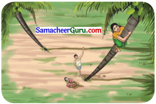Samacheer Kalvi 3rd English Guide Term 3 Chapter 1 Our Leafy Friends 12
