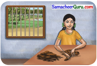 Samacheer Kalvi 3rd English Guide Term 3 Chapter 1 Our Leafy Friends 14