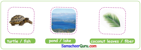 Samacheer Kalvi 3rd English Guide Term 3 Chapter 1 Our Leafy Friends 15