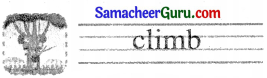 Samacheer Kalvi 3rd English Guide Term 3 Chapter 1 Our Leafy Friends 21