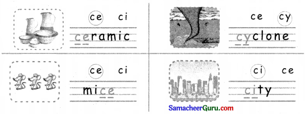 Samacheer Kalvi 3rd English Guide Term 3 Chapter 1 Our Leafy Friends 27