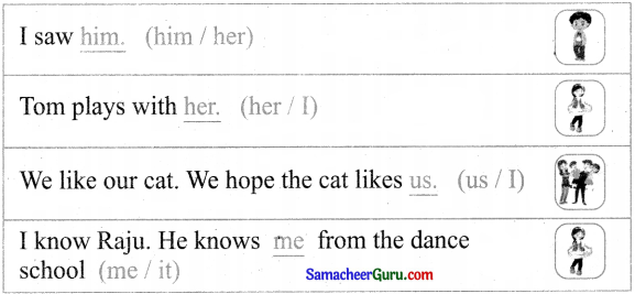 Samacheer Kalvi 3rd English Guide Term 3 Chapter 1 Our Leafy Friends 45