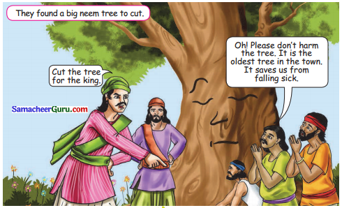 Samacheer Kalvi 3rd English Guide Term 3 Chapter 1 Our Leafy Friends 48