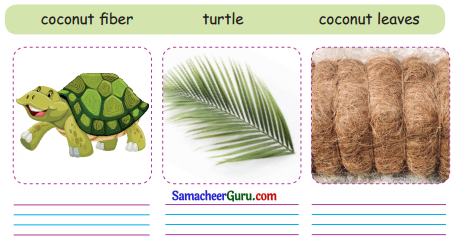 Samacheer Kalvi 3rd English Guide Term 3 Chapter 1 Our Leafy Friends 64
