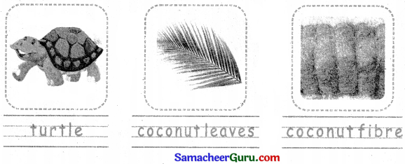 Samacheer Kalvi 3rd English Guide Term 3 Chapter 1 Our Leafy Friends 65
