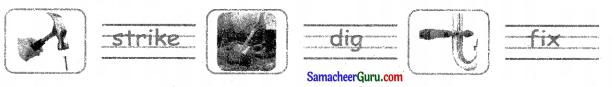 Samacheer Kalvi 3rd English Guide Term 3 Chapter 2 Tools We Use 23