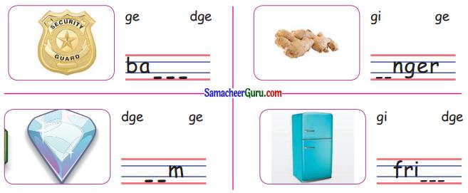 Samacheer Kalvi 3rd English Guide Term 3 Chapter 2 Tools We Use 24