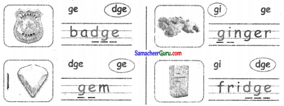 Samacheer Kalvi 3rd English Guide Term 3 Chapter 2 Tools We Use 25