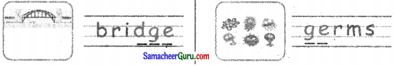 Samacheer Kalvi 3rd English Guide Term 3 Chapter 2 Tools We Use 27
