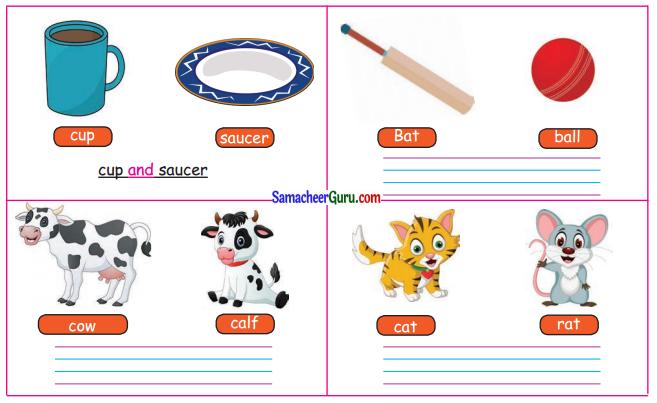 Samacheer Kalvi 3rd English Guide Term 3 Chapter 2 Tools We Use 33