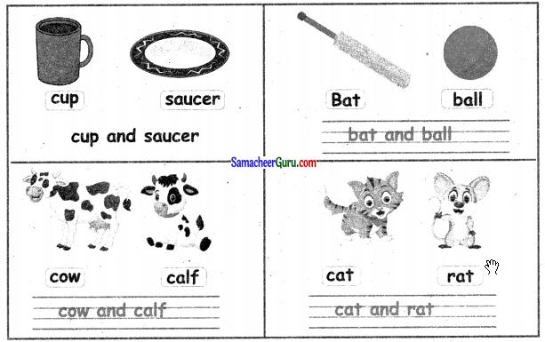 Samacheer Kalvi 3rd English Guide Term 3 Chapter 2 Tools We Use 34
