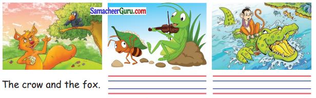 Samacheer Kalvi 3rd English Guide Term 3 Chapter 2 Tools We Use 40