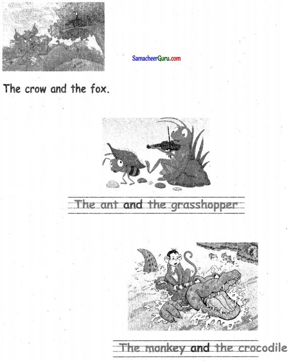 Samacheer Kalvi 3rd English Guide Term 3 Chapter 2 Tools We Use 41