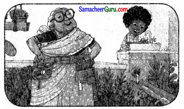 Samacheer Kalvi 3rd English Guide Term 3 Chapter 2 Tools We Use 43