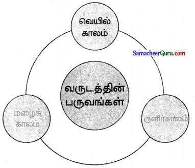 Samacheer Kalvi 3rd Maths Guide Term 3 Chapter 6 நேரம் 10