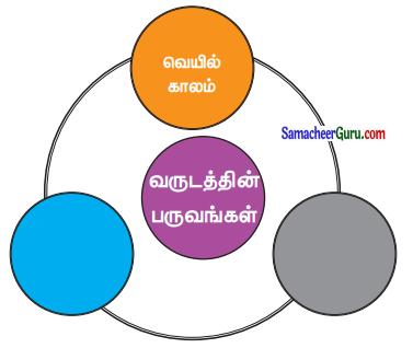Samacheer Kalvi 3rd Maths Guide Term 3 Chapter 6 நேரம் 9