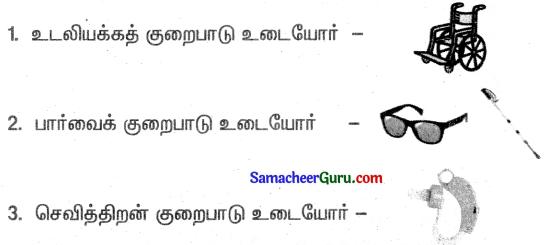 Samacheer Kalvi 3rd Science Guide Term 1 Chapter 1 எனது உடல் 13