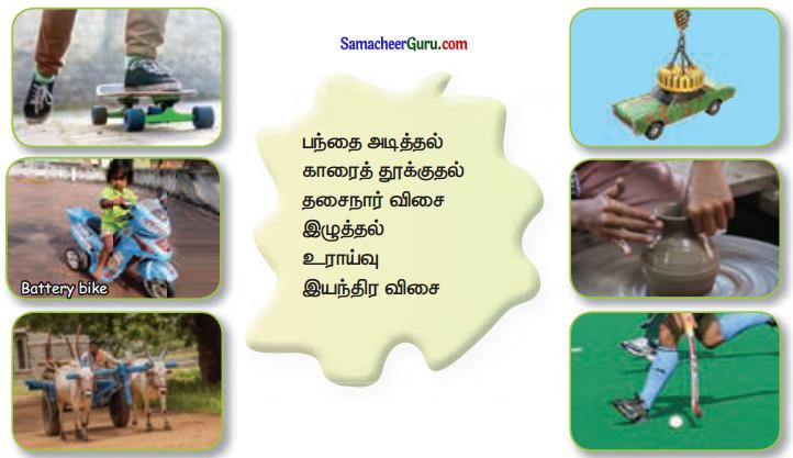 Samacheer Kalvi 3rd Science Guide Term 1 Chapter 3 விசை 10