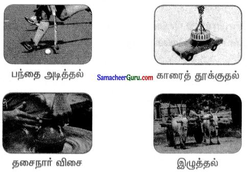 Samacheer Kalvi 3rd Science Guide Term 1 Chapter 3 விசை 11