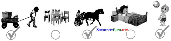 Samacheer Kalvi 3rd Science Guide Term 1 Chapter 3 விசை 3