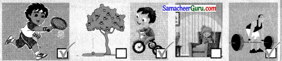 Samacheer Kalvi 3rd Science Guide Term 1 Chapter 3 விசை 7