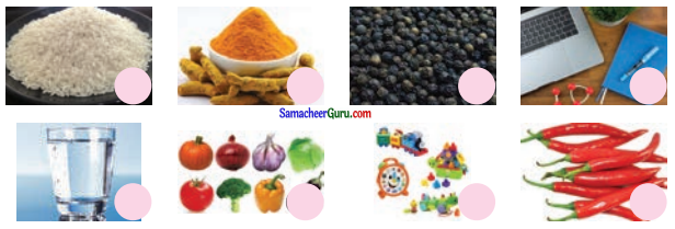 Samacheer Kalvi 3rd Science Guide Term 1 Chapter 4 அன்றாட வாழ்வில் அறிவியல் 1