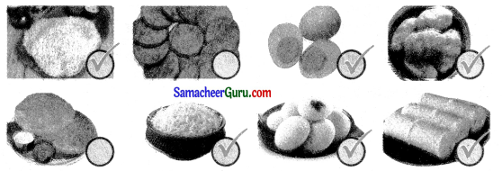 Samacheer Kalvi 3rd Science Guide Term 1 Chapter 4 அன்றாட வாழ்வில் அறிவியல் 4