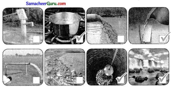 Samacheer Kalvi 3rd Science Guide Term 2 Chapter 2 நீர் 8
