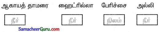 Samacheer Kalvi 3rd Science Guide Term 2 Chapter 3 தாவரங்கள் 13