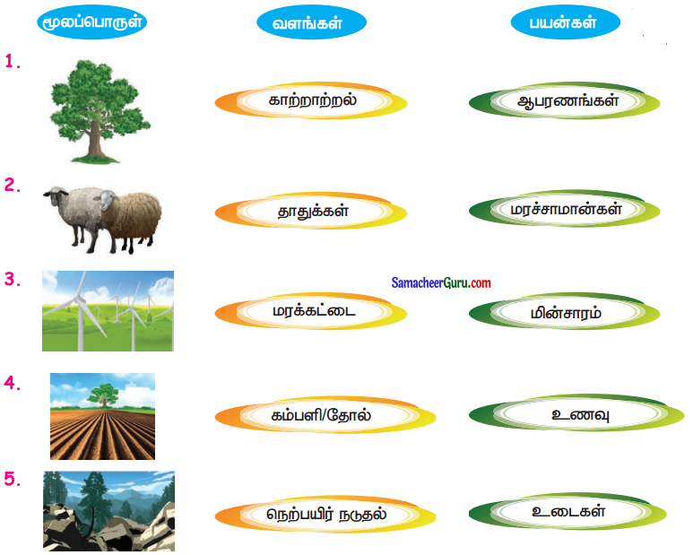 Samacheer Kalvi 3rd Science Guide Term 3 Chapter 1 நமது சுற்றுச்சூழல் 2