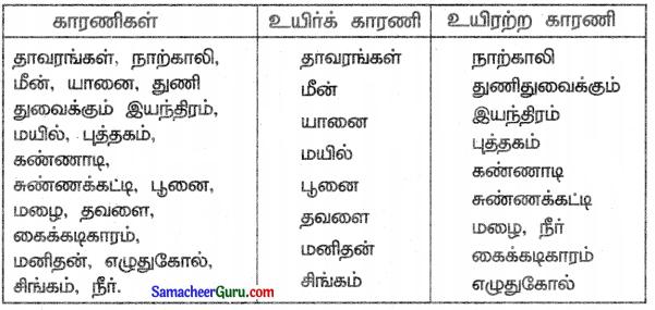 Samacheer Kalvi 3rd Science Guide Term 3 Chapter 1 நமது சுற்றுச்சூழல் 5