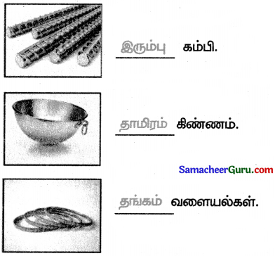 Samacheer Kalvi 3rd Social Science Guide Term 3 Chapter 2 கனிம வளங்கள் 2