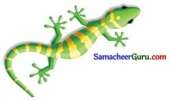 Samacheer Kalvi 3rd Tamil Guide Term 1 Chapter 2 கண்ணன் செய்த உதவி 2