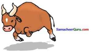 Samacheer Kalvi 3rd Tamil Guide Term 1 Chapter 2 கண்ணன் செய்த உதவி 3
