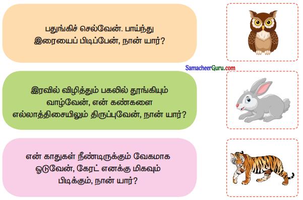 Samacheer Kalvi 3rd Tamil Guide Term 1 Chapter 3 தனித் திறமை 1