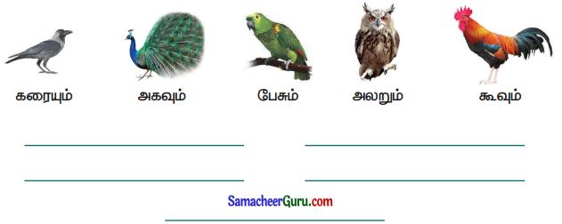 Samacheer Kalvi 3rd Tamil Guide Term 3 Chapter 8 அறிவூட்டும் தொலைக்கா செய்திகள் 3