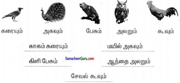 Samacheer Kalvi 3rd Tamil Guide Term 3 Chapter 8 அறிவூட்டும் தொலைக்கா செய்திகள் 4