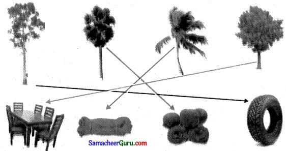 Samacheer Kalvi 3rd tamil Guide Term 2 Chapter 2 ஒன்றுபட்டால் உண்டு வாழ்வு 5